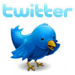 Het Twitter-vogeltje