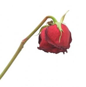 De dubbele keerzijde van Valentijnsag