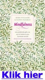 Zelfdestructief mindfulness boek