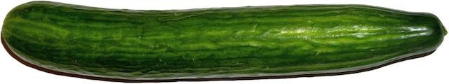 Grote penis XL (formaat komkommer)