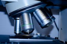 Onderzoek van het uitstrijkje door middel van een microscoop